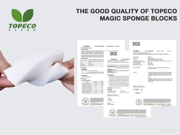 SGS magic sponge blocks