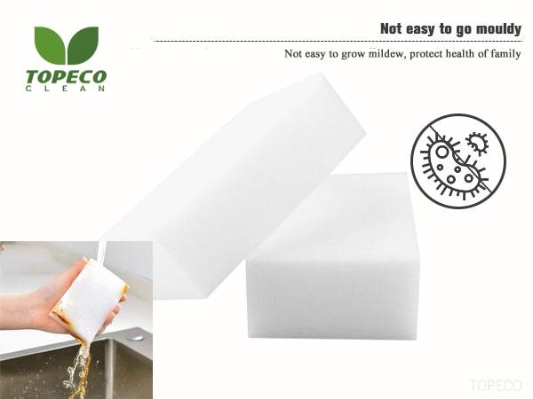 household sponge white walls